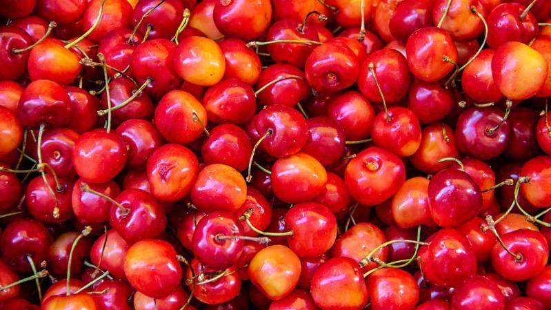 National Cherry Festival michigan