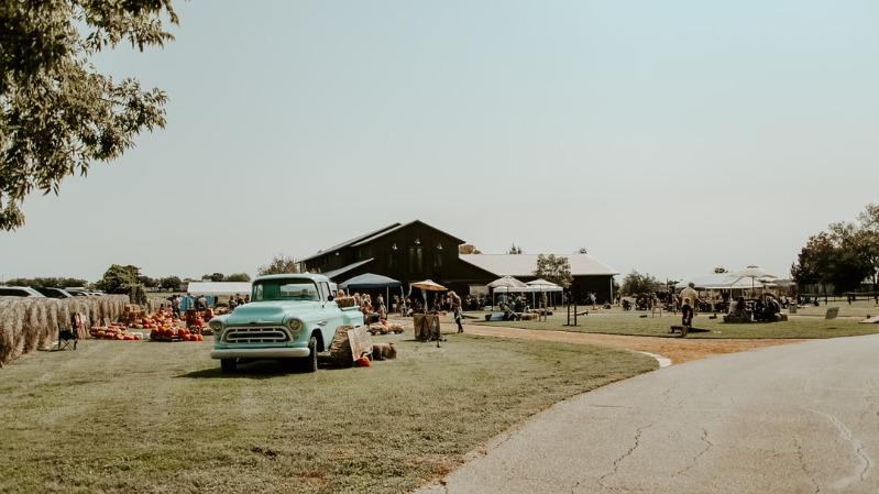 fall-festivals nw-michigan-family-friendly-